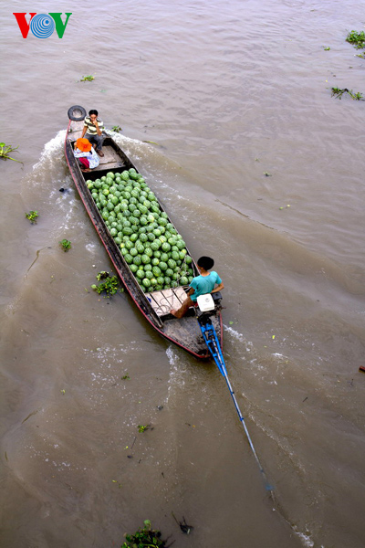 A boat carrying water melon