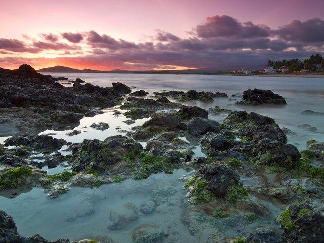 Galápagos Islands and Amazon Jungle of Ecuador