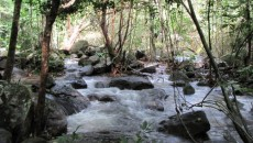suoitranh-phuquoc-vietnamdiscovries5