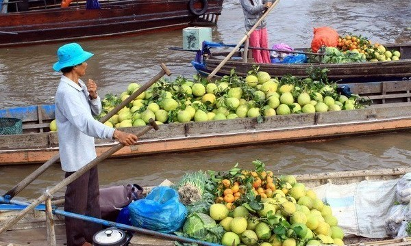 The famed Cai Rang floating market. (Photo: VNA)