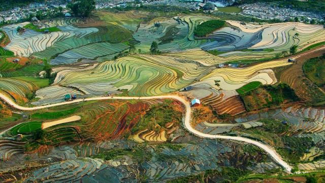 01-Terraced rice fields