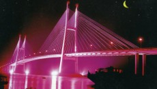 My Thuan Bridge Photo:  lthdan/wordpress.