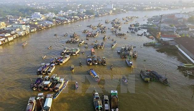 Cai_Rang_floating_market