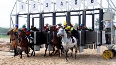 horse_racecourse